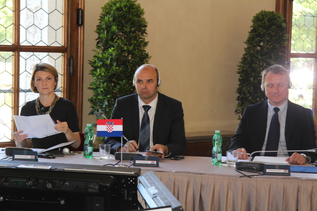 Croatia was represented by the Ambassador to the Czech Republic, Ines Troha, and Petar Mihatov and Drago Kelemen from its Ministry of Defence