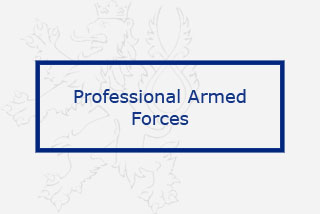 PROFESSIONAL ARMED FORCES